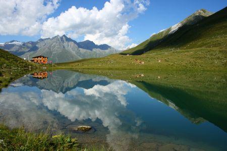 Berger Kogel in Osttirol © Nationalpark Hohe Tauern, Scheifele