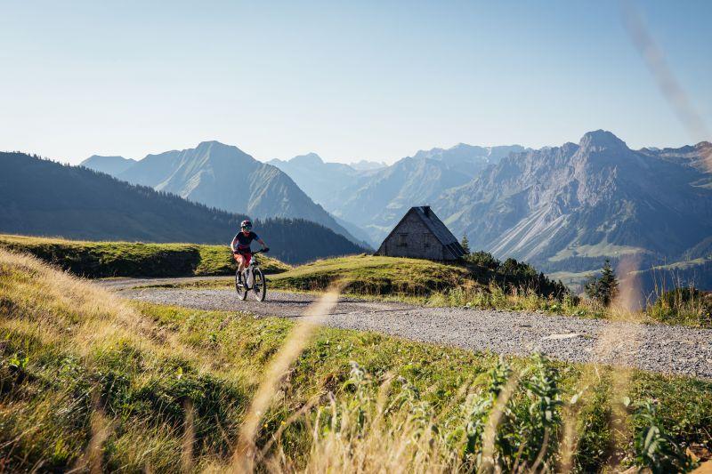 Mountainbiken im Bereich Diedamskopf © Sebastian Stiphout - Bregenzerwald Tourismus (7).jpg