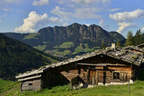 Stettauer Alm Inneralpbach_Alpbachtal Tourismus_B. Berger