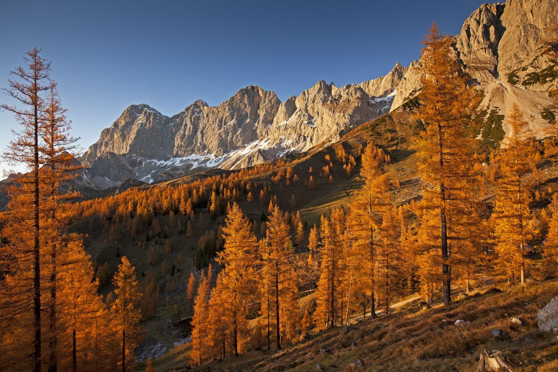 Umgeben von orangegelb leuchtenden Bäumen reicht ein tiefer Atemzug um den Körper mit neuer Energie zu durchfluten.