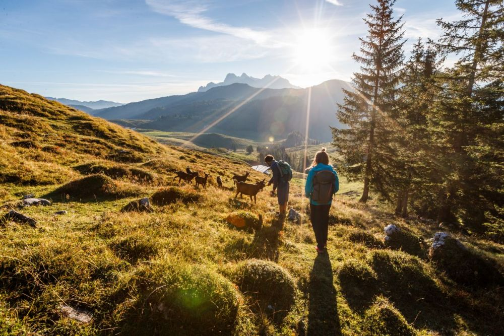Kitzbüheler Alpen-Brixental © Erwin Haiden