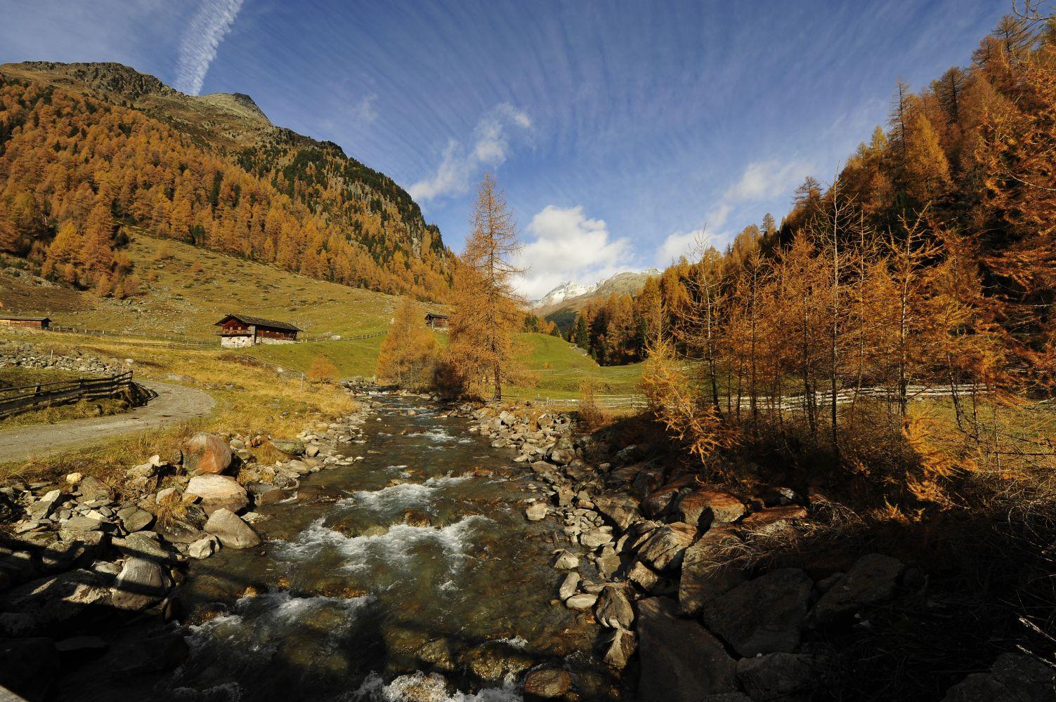 Der goldene Herbst zeigt sich am schönsten in der unberührten Natur