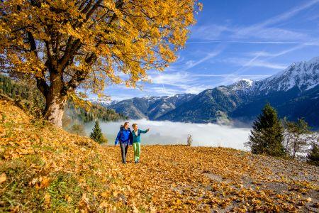 Herbstspaziergang in Gastein (c) Gasteinertal Tourismus GmbH, Marktl (1)
