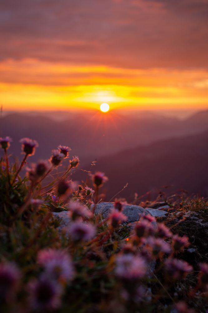 #1 Sonnenaufgang am Gartnerkofel