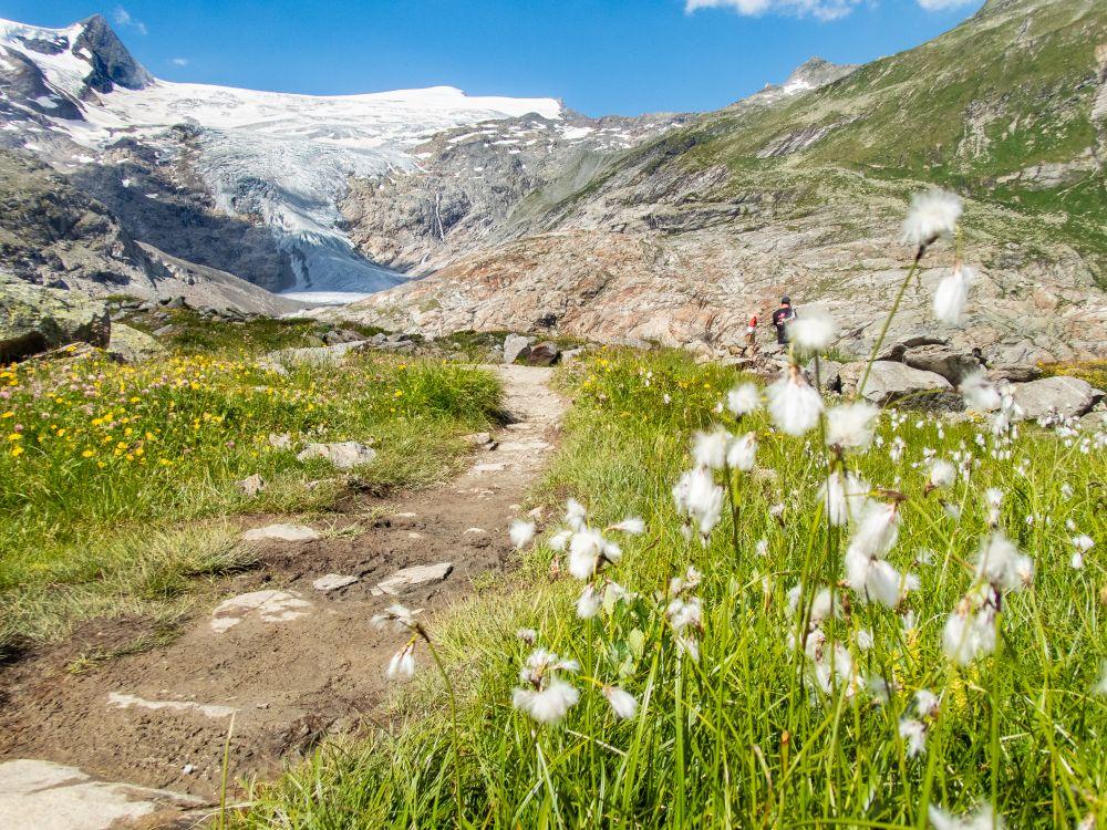 Osttirol_Wanderung-Gletscherweg_pulsderfreiheit-