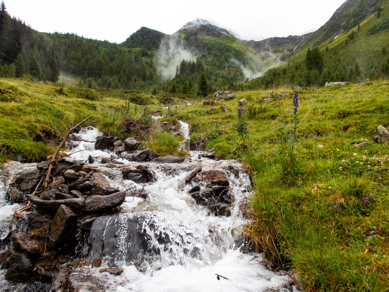 Wanderung Thialkopf