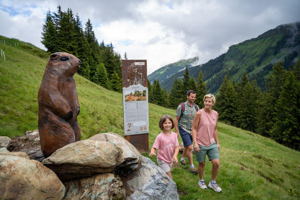 Wandern in Saalbach © Saalbach Hinterglemm