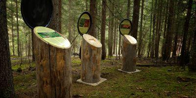 Walderlebnisweg Lesachtal ©-Tourismusverein-Liesing