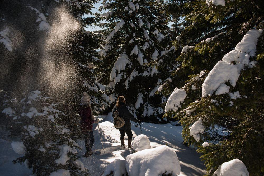 2014_Winter_Schneeschuhwandern_Saualpe_Eberstein © Region Mittelkärnten (3)