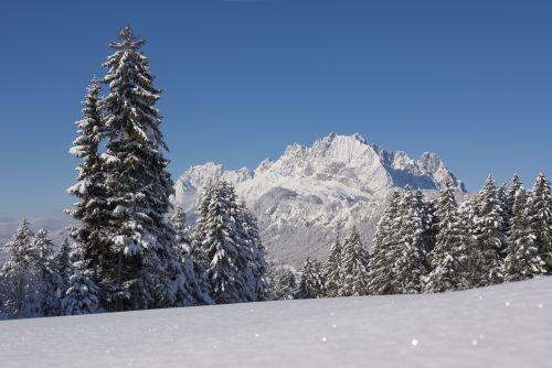 Blick Wilder Kaiser Oberndorf © Franz Gerdl, St. Johann in Tirol
