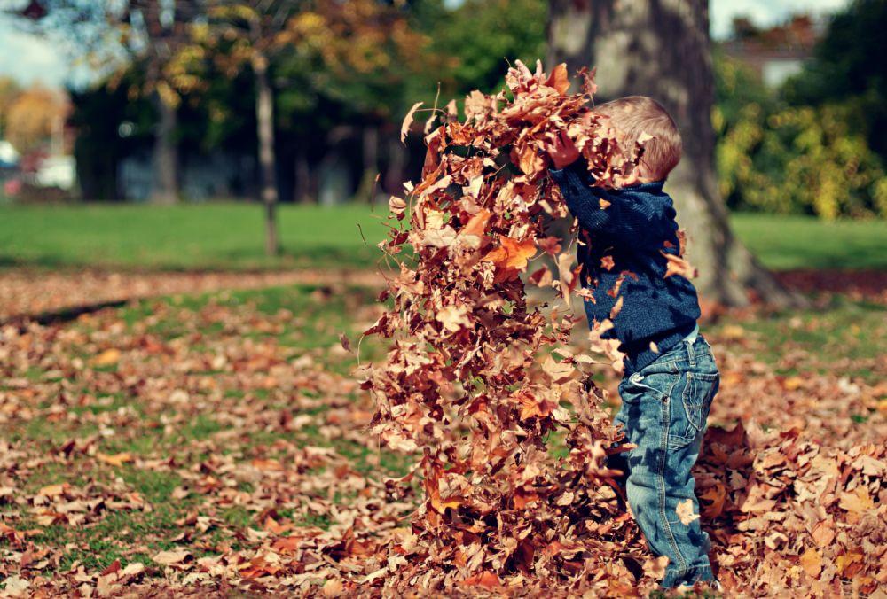 Herbstliches Spielen im Laub © Pixabay