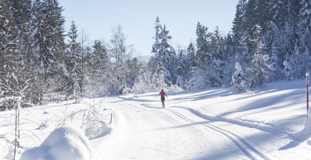 Langlaufen PillerseeTal © defrancesco (9)