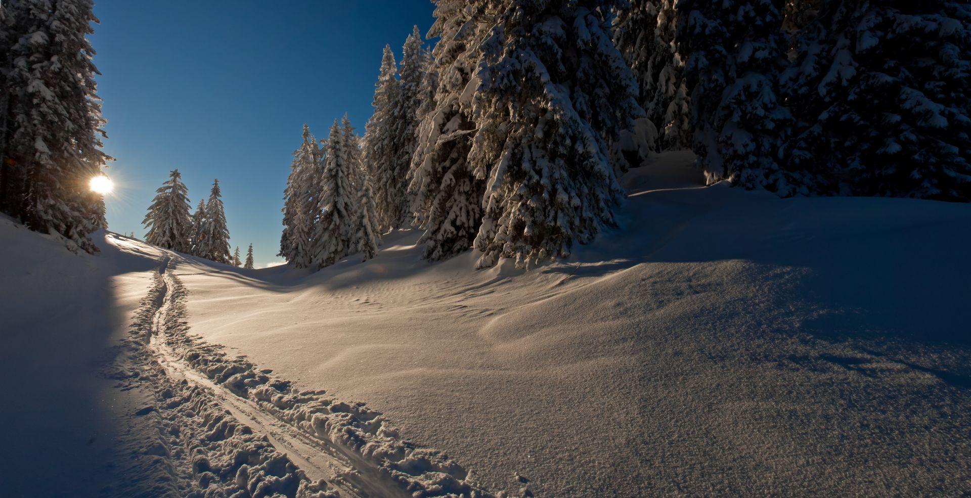 Die Sonne lässt die Schneedecke glitzern