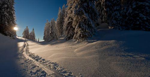 Spuren Schnee_Wilder Kaiser_© Wilder Kaiser