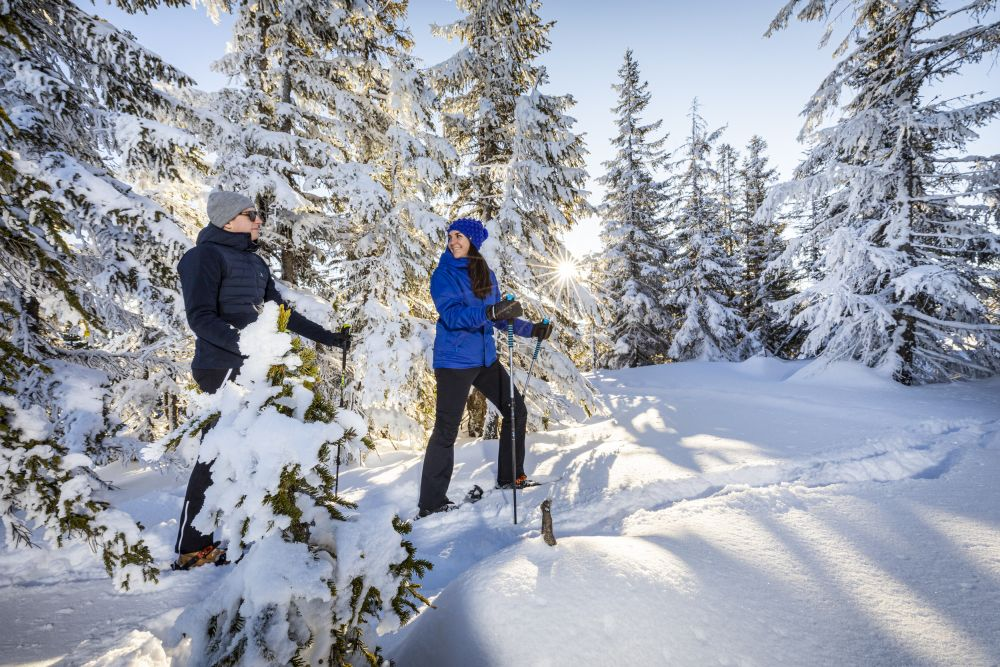 Filzmoos Winterwandern (c) Filzmoos Tourismus