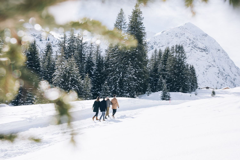 Wanderpfade durch die Winterlandschaft