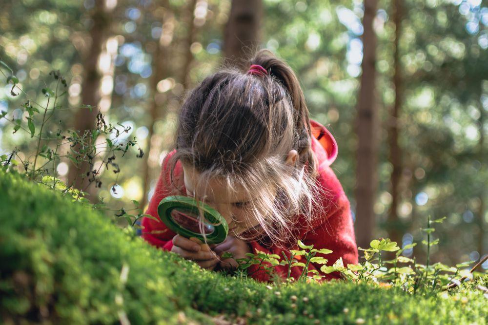 Spielen im Wald (c)JCI_0857