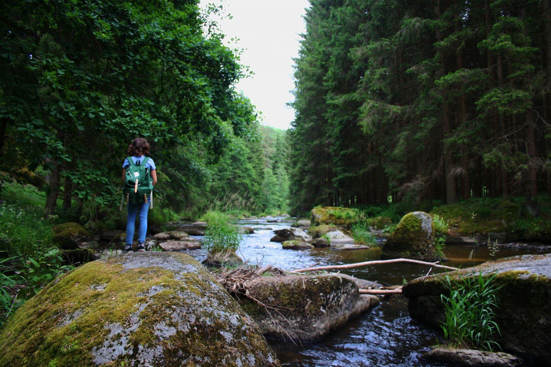#3 Wasserwunderweg bei Zwettl