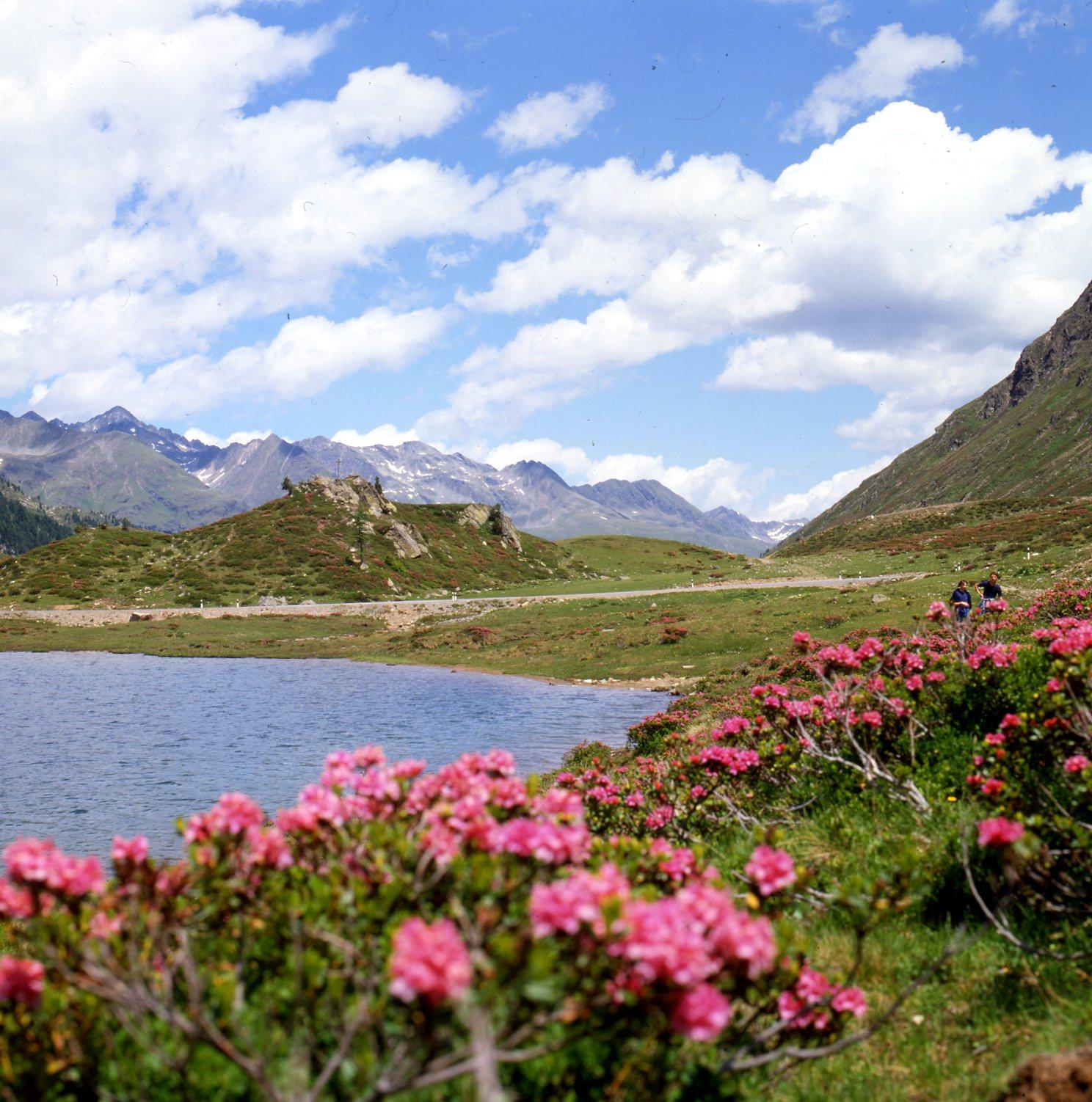Obersee-©-Osttirol-Werbung