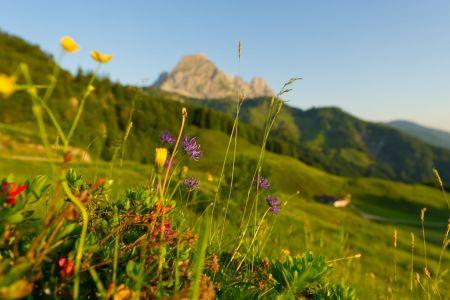 Der Wilde Kaiser, © TVB St. Johann in Tirol, Franz Gerdl